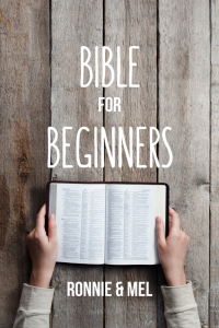 bible for beginners how to read read study god's word and know Jesus through scripture translations help