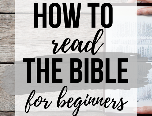 How to Read the Bible || A Beginners Guide!